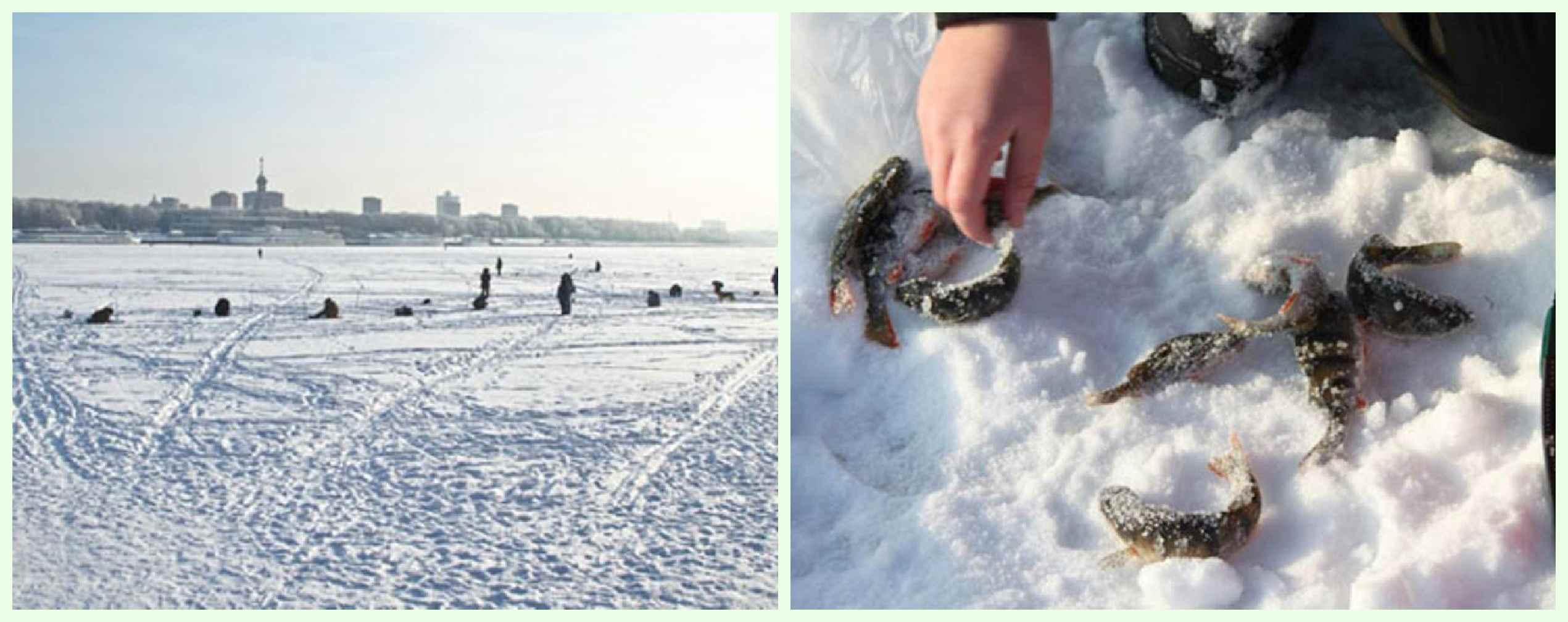 Куда поехать на рыбалку в химках московской области и запрет 2019