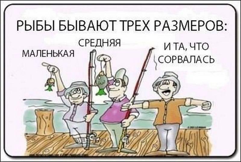 Анекдоты про рыбалку. подборка смешных анекдотов про рыбалку и рыбаков