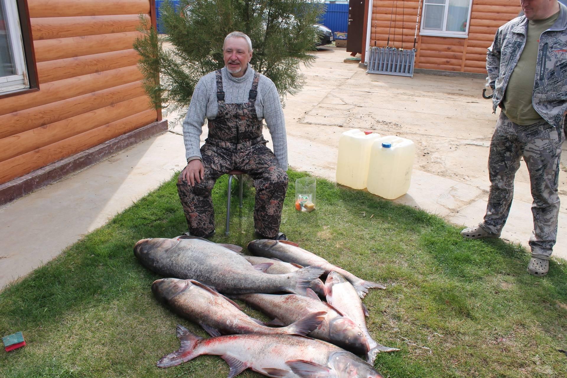 Рыбалка в псковской области – популярные места
