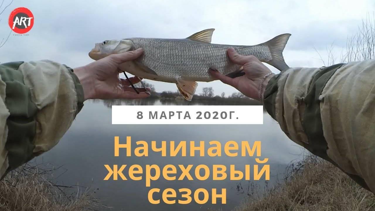 Новый сезон на нтв начинается досрочно // нтв.ru