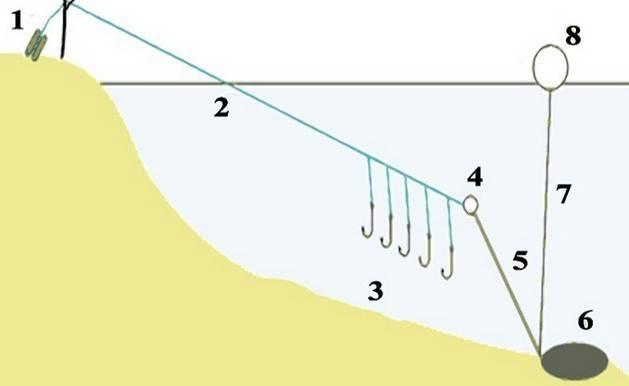 Как ловить чехонь на спиннинг: оснастка, приманки, техника