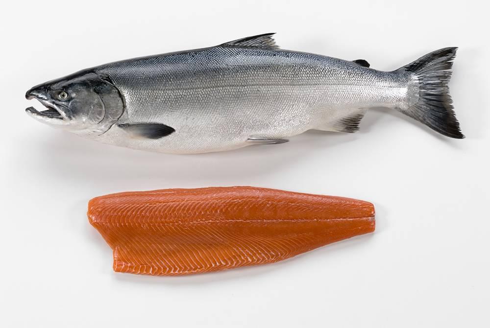 Как приготовить рыбу кижуч в духовке