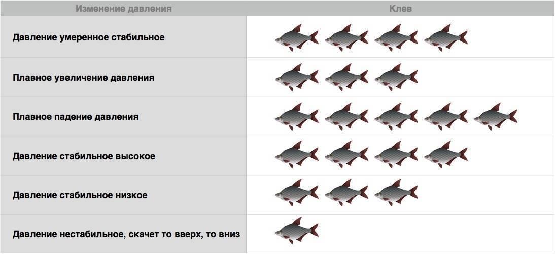 Атмосферное давление для рыбалки - какое давление считается нормальным, оптимальным и лучшим?