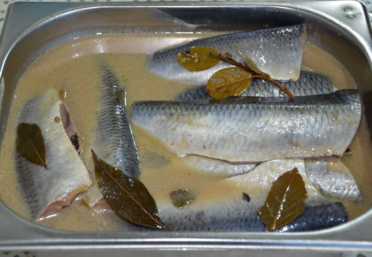Как засолить красную рыбу в домашних условиях быстро и вкусно – 10 пошаговых рецептов