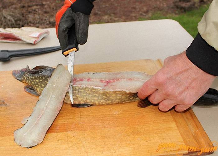 Как разделать щуку на филе или фарш для котлет