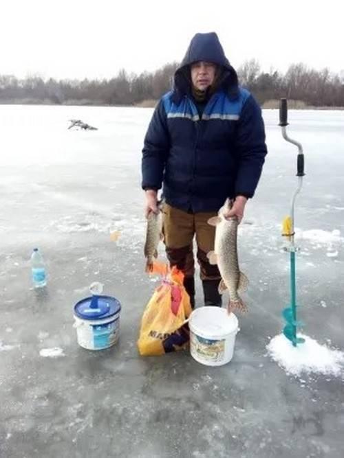 Ловля толстолобика осенью - полезные советы рыболовам