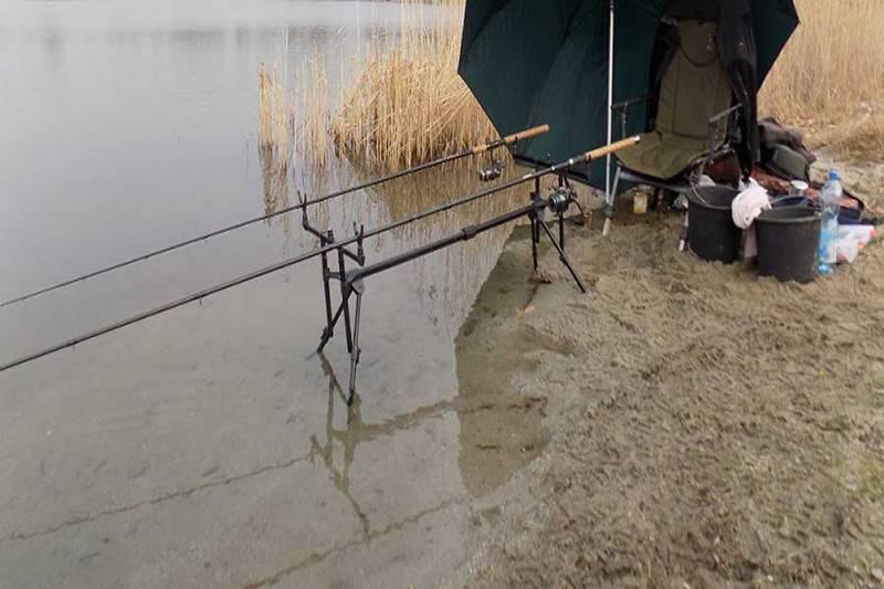 Рыбалка в белгороде и белгородской области, лучшие базы отдыха для ловли в белогорье