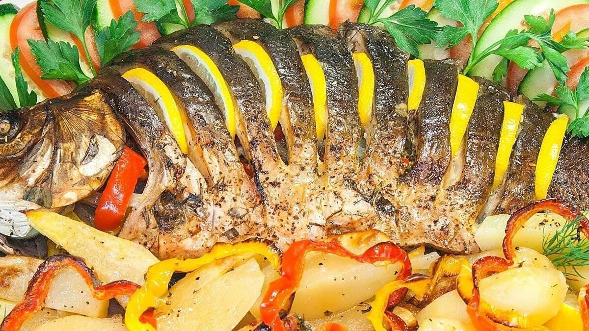 Рыба сазан — 6 вкусных рецептов приготовления, как запечь в духовке или пожарить на сковороде