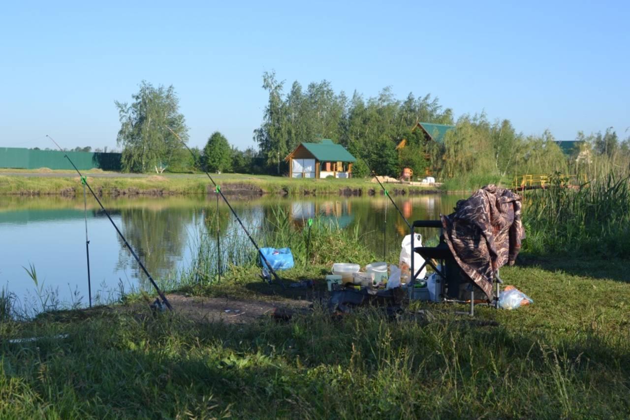 Как взять в аренду пруд: порядок действий, пакет документов, вложения и рентабельность - fin-az.ru