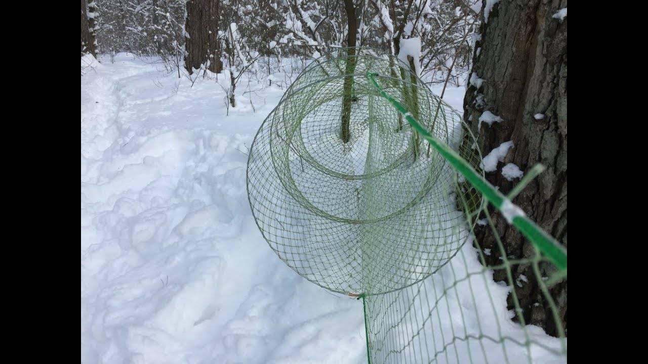 Бредень — это сеть для ловли рыбы