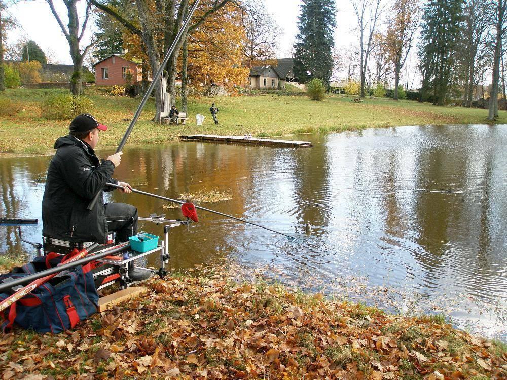 Штекер - описание, как ловить рыбу штекером, прикормка
