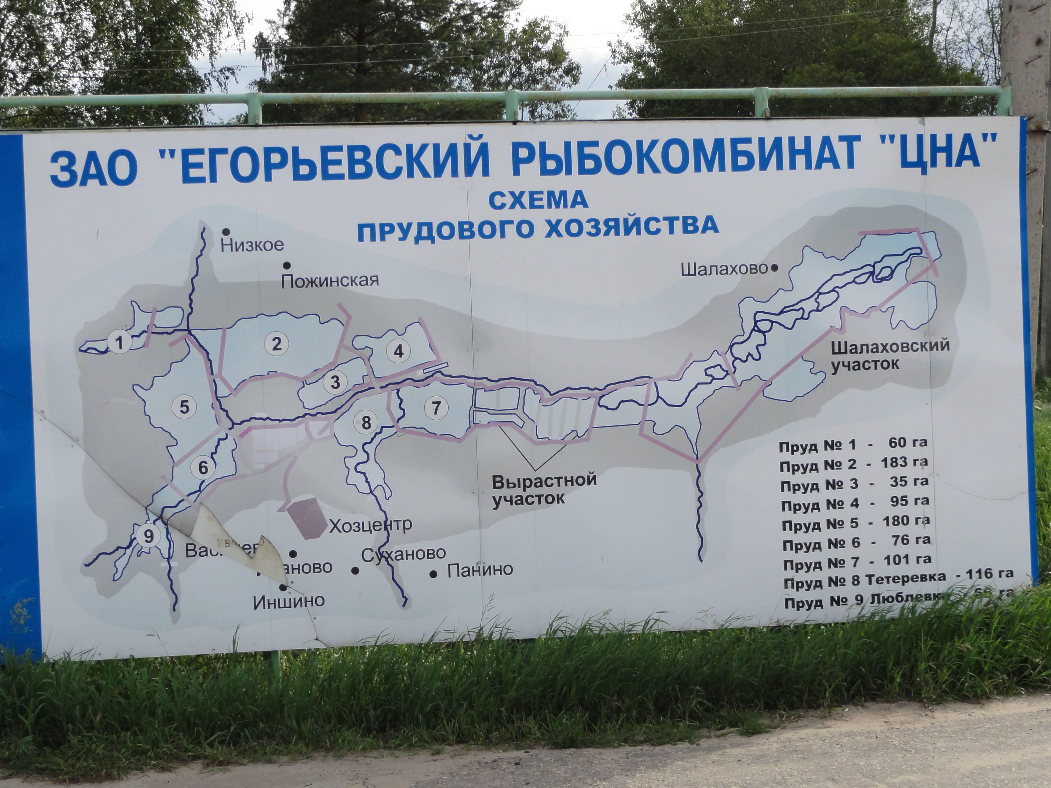 ᐉ егорьевский рыбокомбинат - платные водоемы - ✅ ribalka-snasti.ru