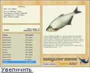 Рыба сопа: краткое описание, места обитания, ловля