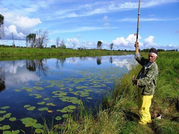 Места для рыбалки в курской области – платная и бесплатная рыбалка!