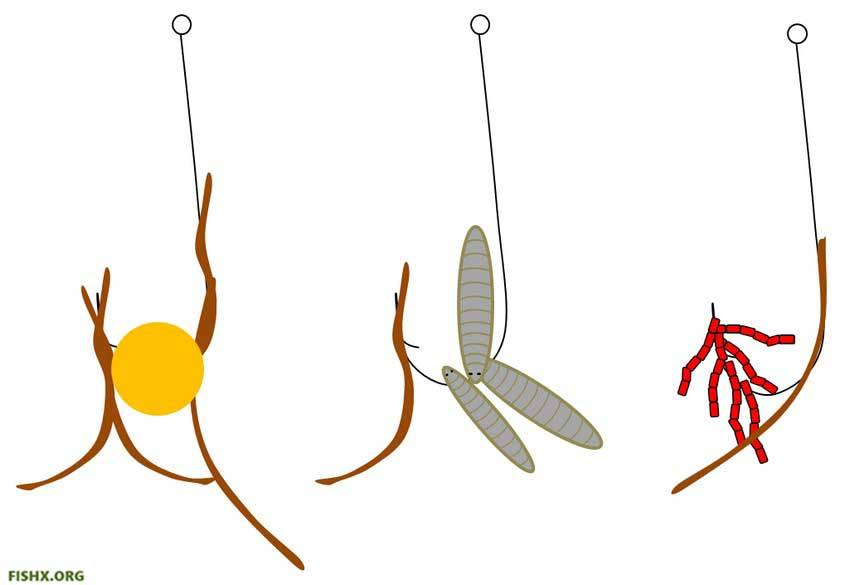 Как насадить червя на крючок