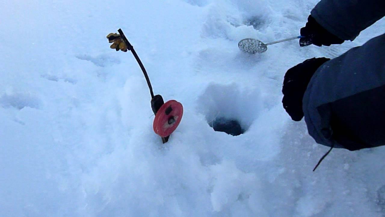 Способы ловли налима зимой