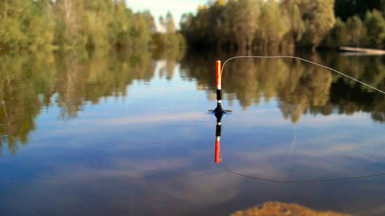 Ловля рыбы в подкидку