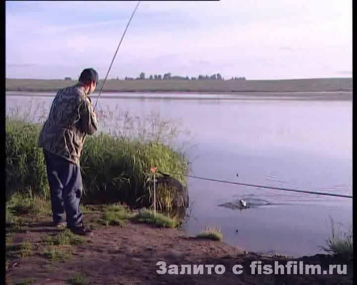 Лучшие места для рыбалки в рязанской области – рыбалке.нет