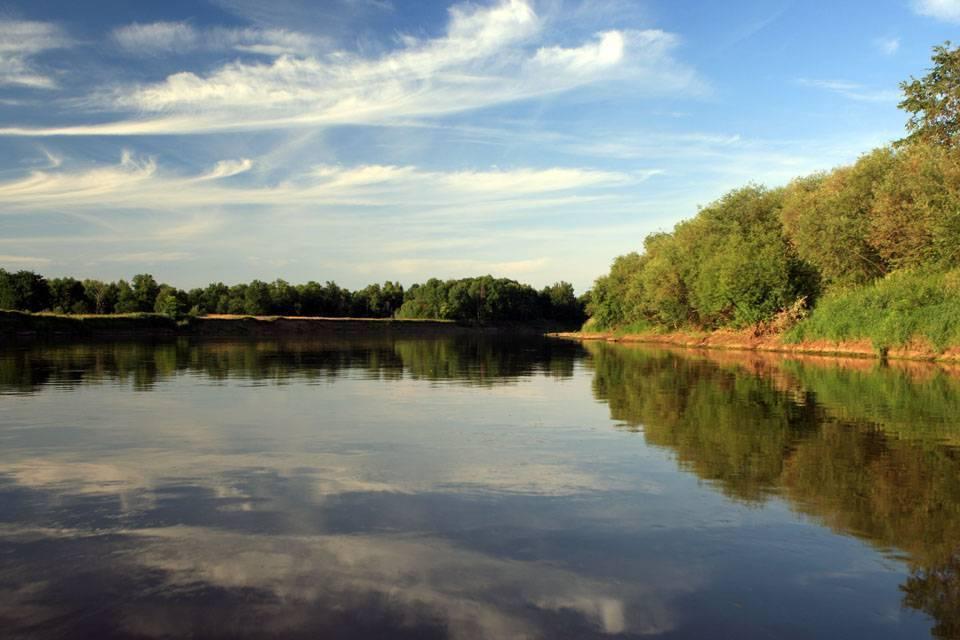Рыбалка на клязьме в московской области: отзывы, какая рыба водится в клязьминском водохранилище