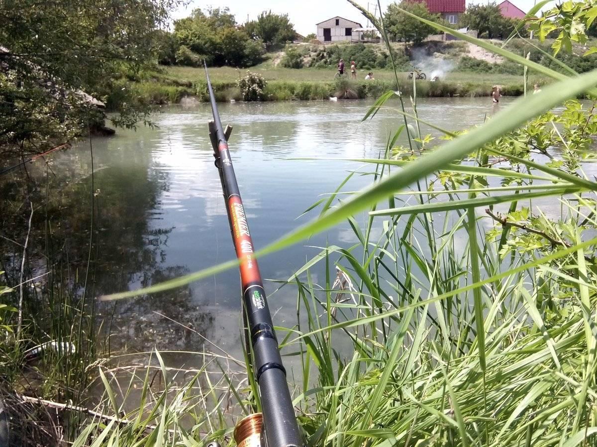 Удочки для летней рыбалки: как выбрать, виды, какие лучше