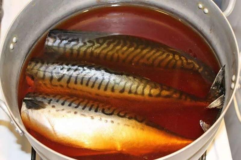 Маринад для рыбы для копчения горячего копчения