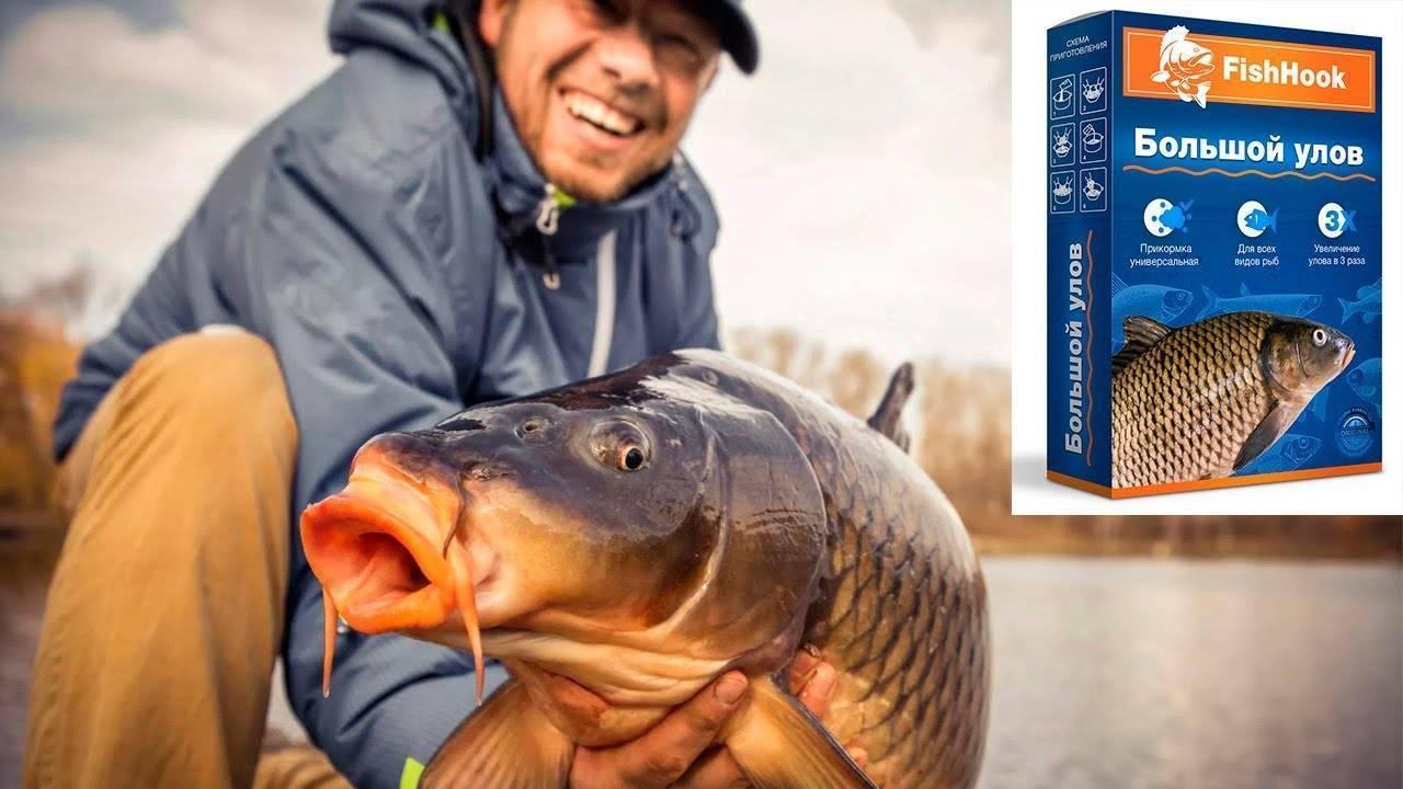 Наживки, насадки и прикормки для рыбалки своими руками. активаторы клева рыбы