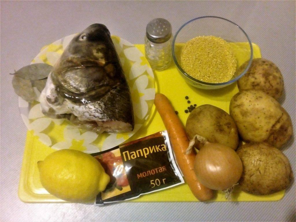 Как приготовить уху из головы толстолобика: пошаговый рецепт с фото