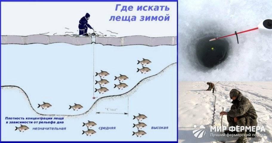 Ловля леща зимой: (прикормка, наживка, снасти, время и погода)