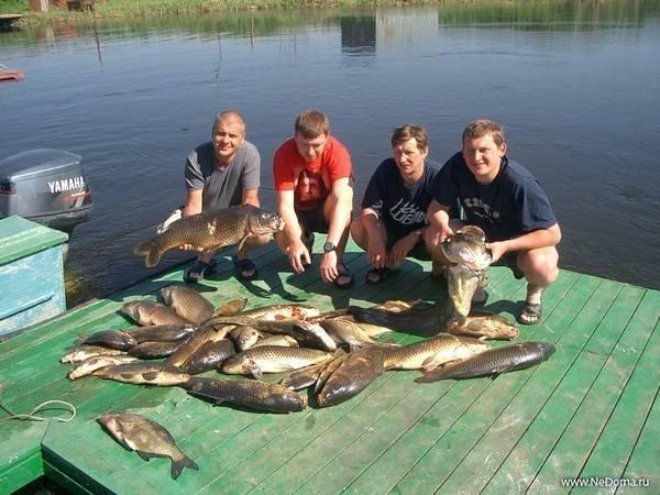 Рыбалка в башкирии: где ловить рыбу на реках и озёрах, платные места лова