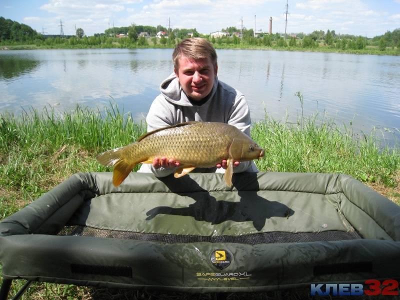Рыбалка в брянском районе