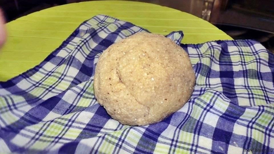 Мастырка на карася, карпа: рецепты приготовления для рыбалки, как приготовить гороховую