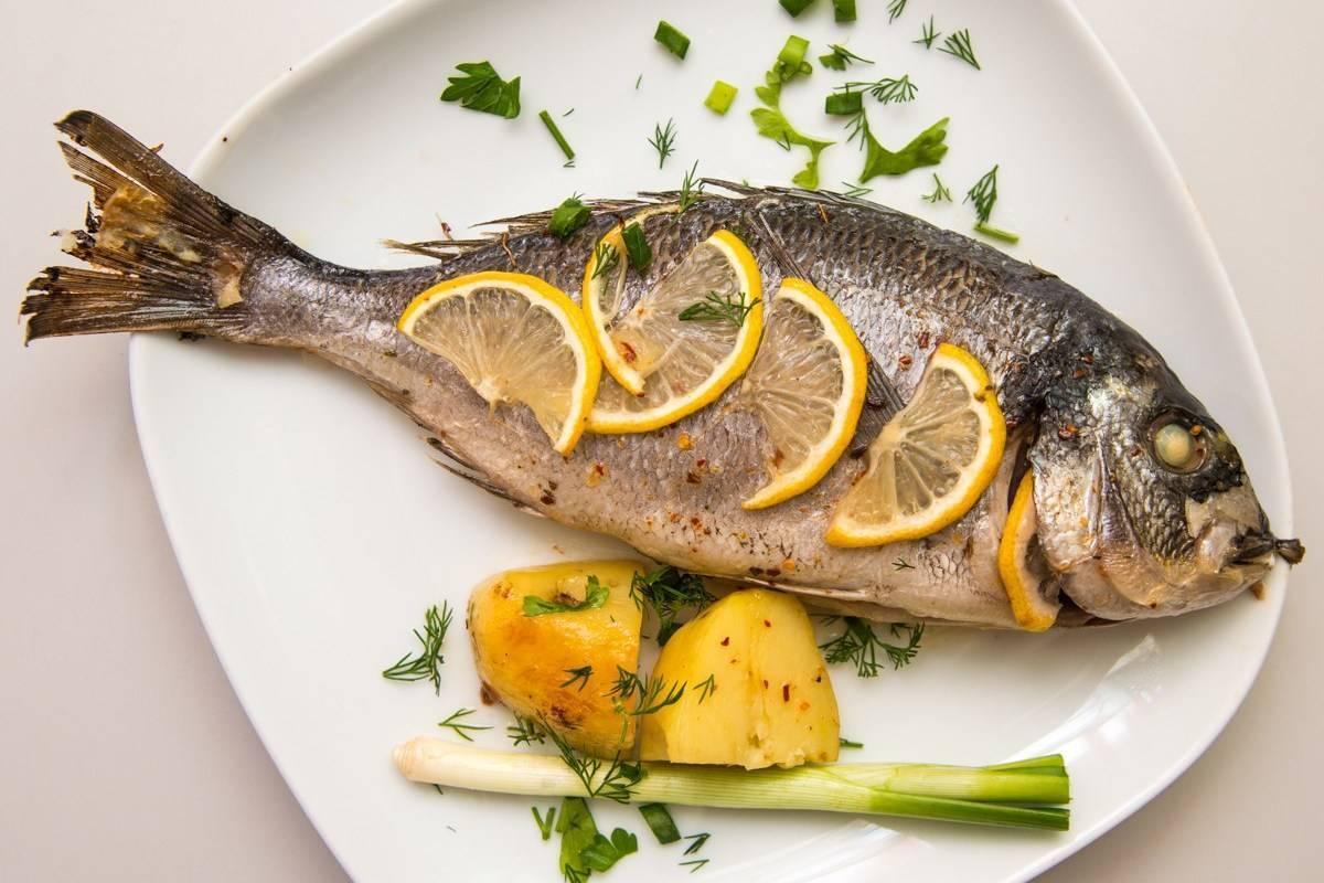 Сибас - как пошагово готовить жареный, запеченный или на пару, гарниры и подача