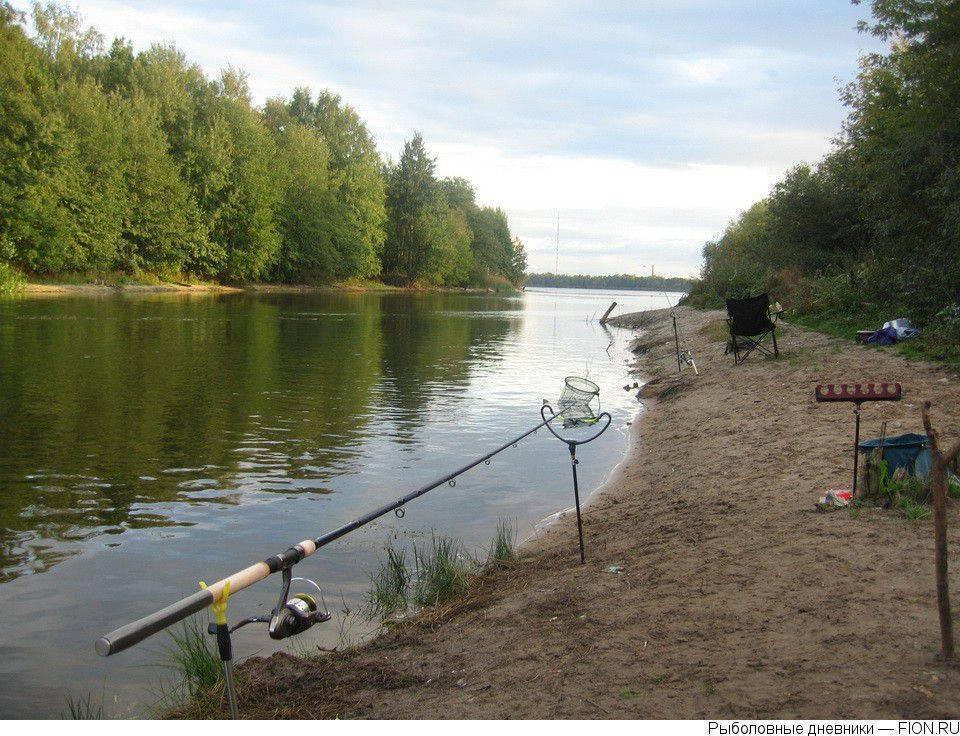 Озеро святое в шатуре: рыбалка, отдых с палатками, отзывы, сайт, карта, отели – туристер.ру