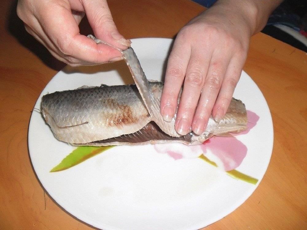 Как разделать щуку на котлеты: поэтапная подготовка рыбы