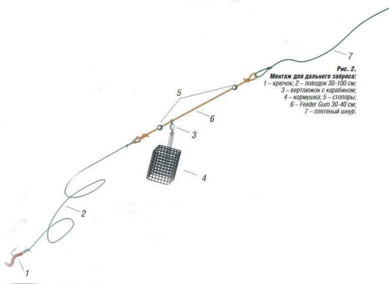 Ловля леща на фидер - правильная тактика, техника и снасти