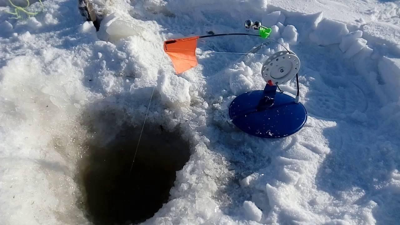 Ловля форели зимой: правильный выбор снастей и места