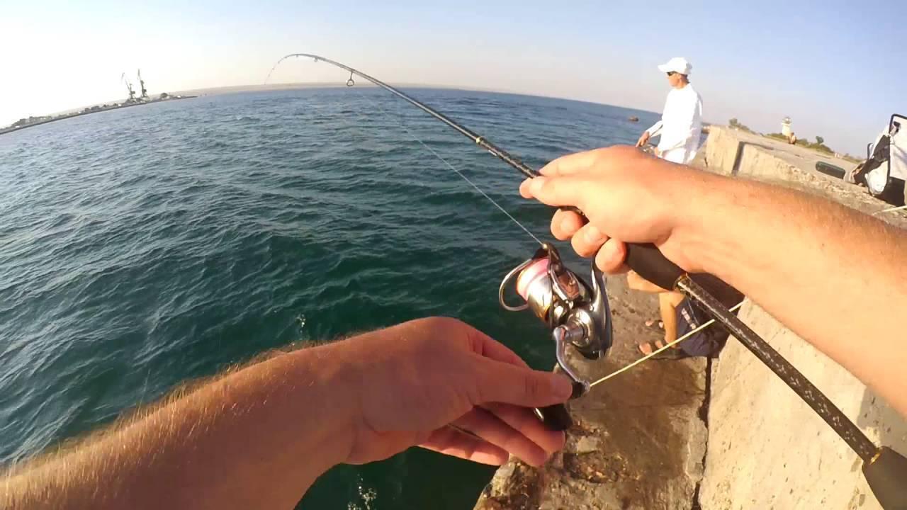Особенности рыбалки в крыму
