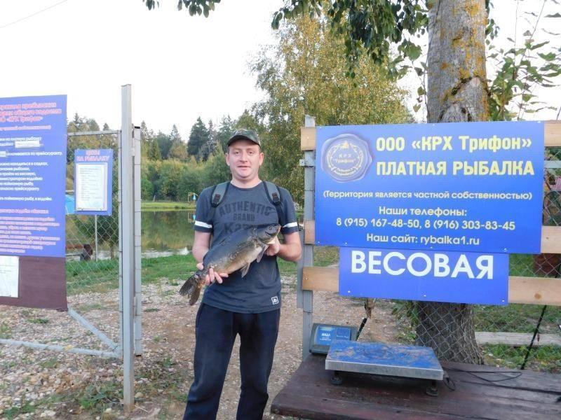 Где клюёт рыба: лучшие места для рыбалки в псковской области в июле — августе
