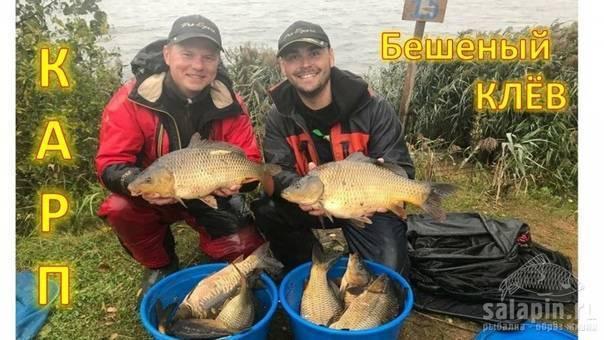 Клинский рыбхоз: платная рыбалка на участках