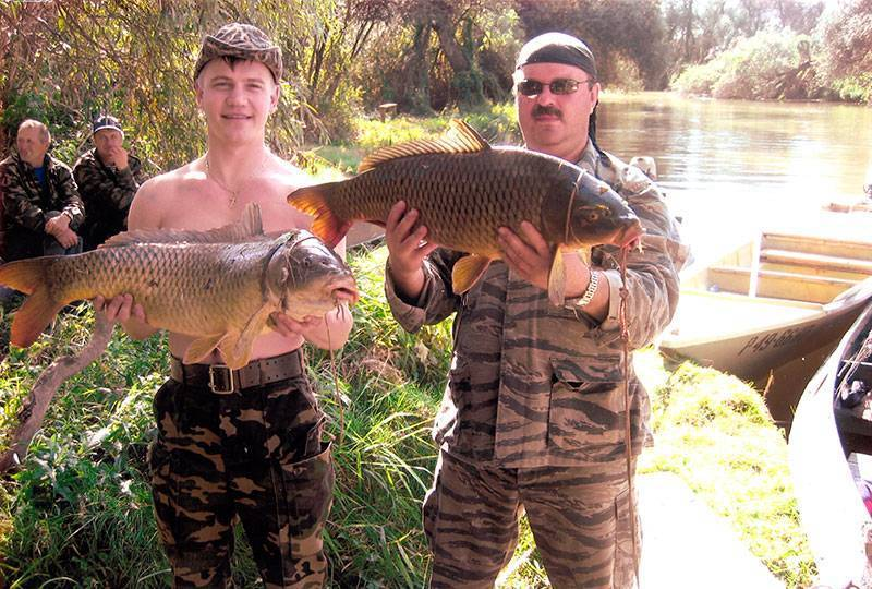 Астрахань - календарь рыболова. рыбалка в астрахани, график клёва рыбы.