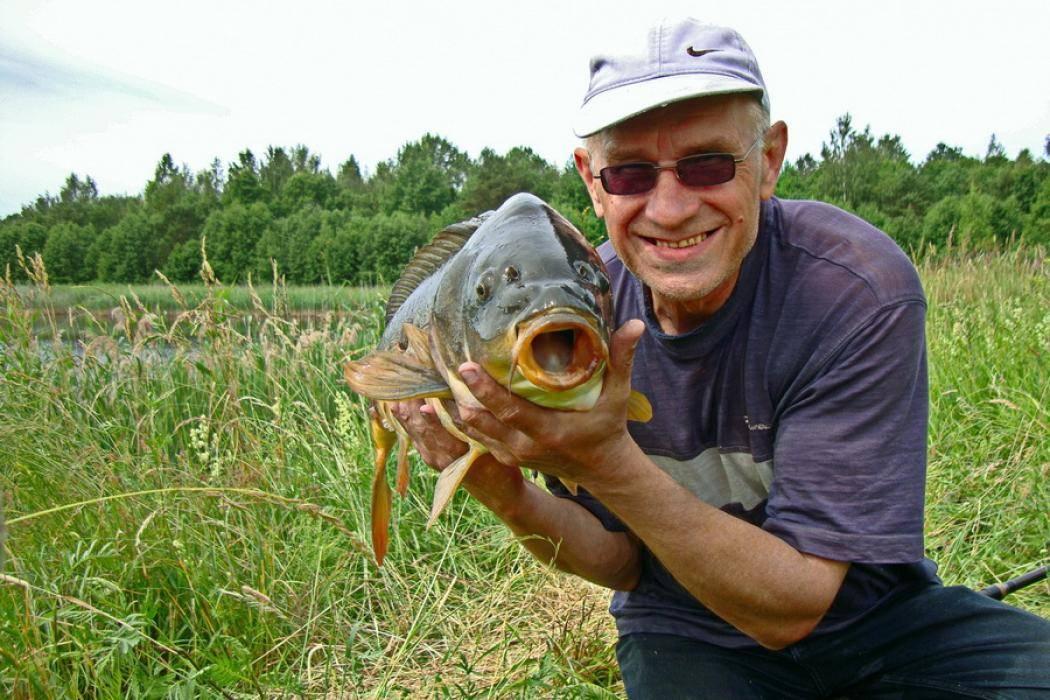 Рыбалка в ленинградской области: лучшие места (платные и бесплатные) и рыболовные базы - условия и цены, видео
