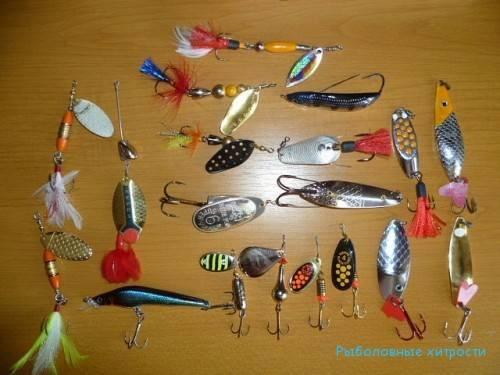 Основы спиннинговой ловли для начинающих
