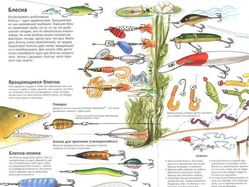 Советы бывалых рыбаков 100 – все о рыбалке