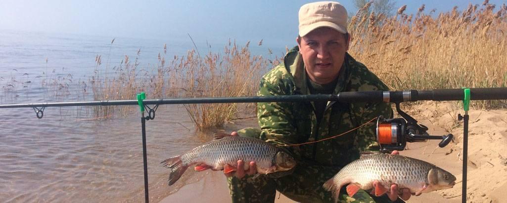 Фидерная ловля для начинающих: как ловить, оснастка и техника заброса