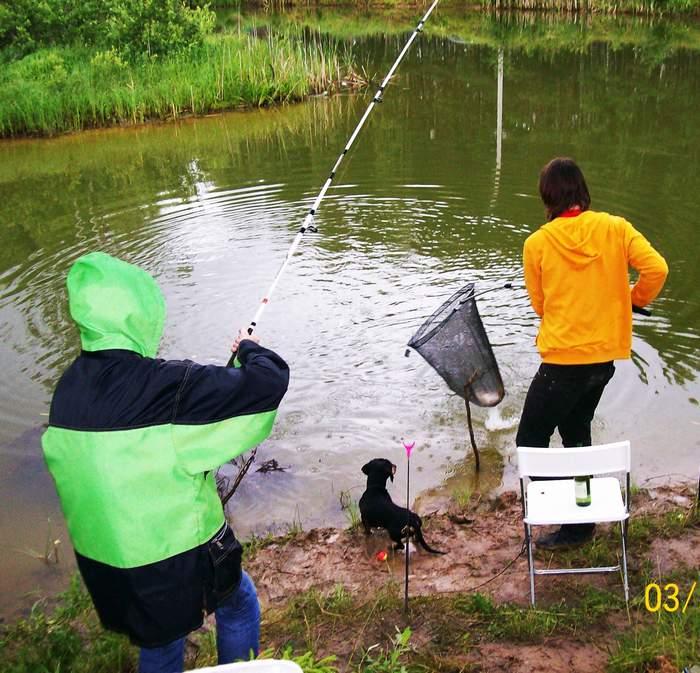 Рыбалка в новгородской области (53) | карта рыболовных мест