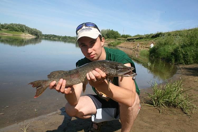 Рыбалка в мордовии: платная и бесплатная рыбалка. зубова поляна и саранск, алферово и судосево, другие рыболовные места. рыба каких размеров клюет в мордовии?