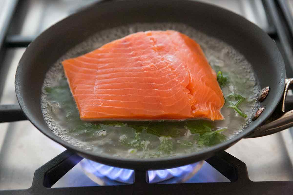 Пп семга, форель, лосось - диетические и низкокалорийные рецепты