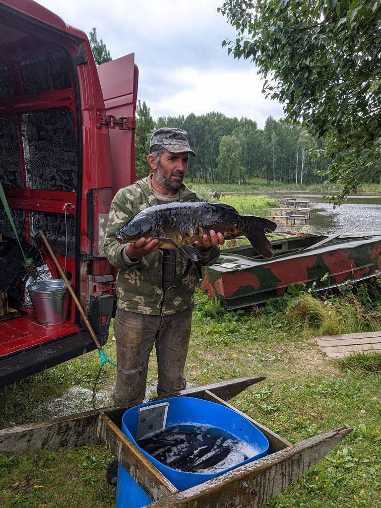 Платные пруды Свердловская область