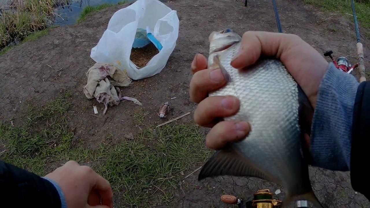 Ловля на пенопласт: оснастка, как ловить, какая рыба клюет