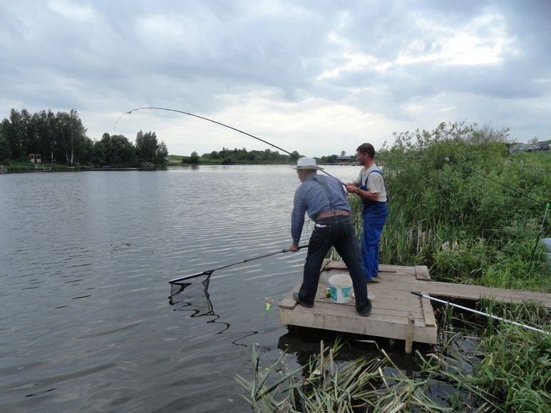 ✅ рыбалка в рязанской области и в рязани - рыбзон.рф